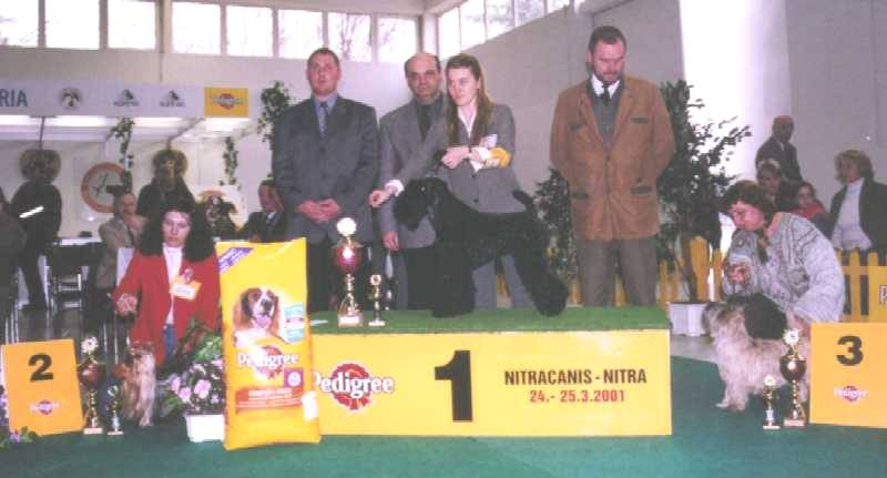 Terrier Group Nitra
